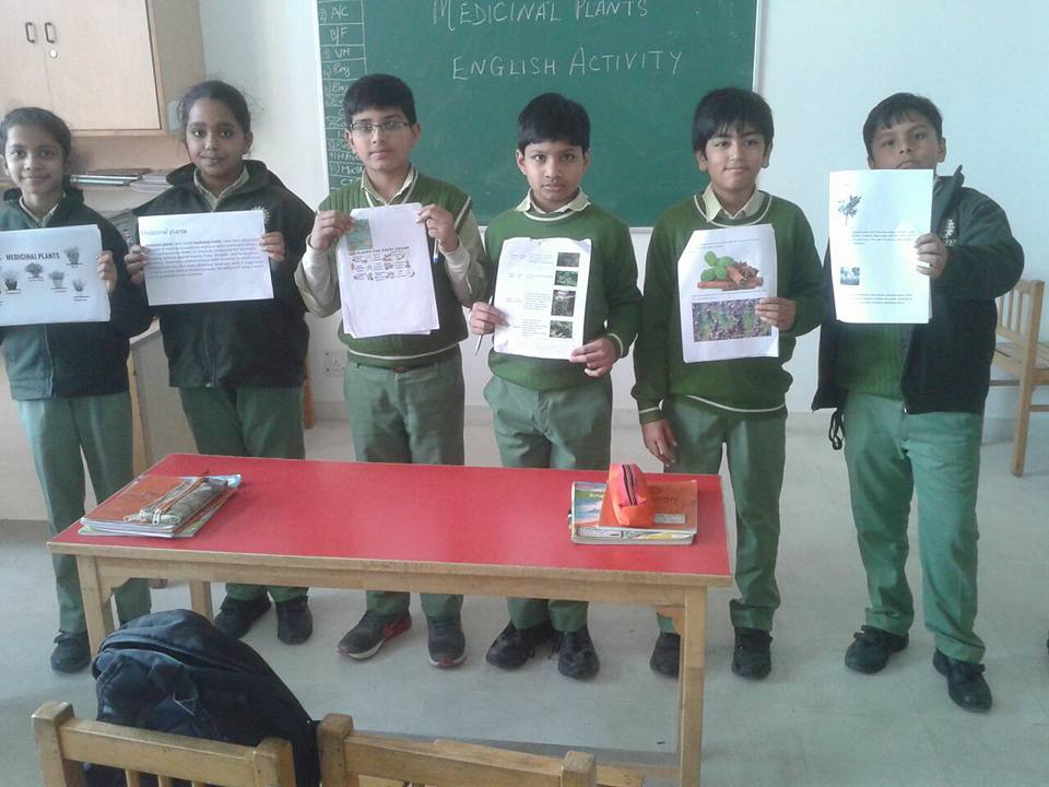 English Activity on Speaking Skills & Medicinal Plants